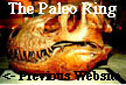 The Paleo Ring's Previous Website